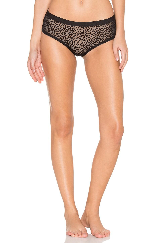 Ziegfeld Hotpant Underwear by Cosabella