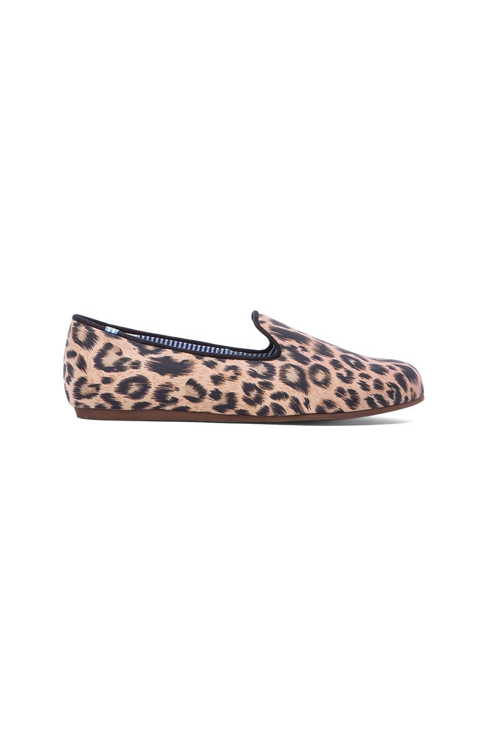 Charles Philip Shanghai Costantino in Classic Leopard