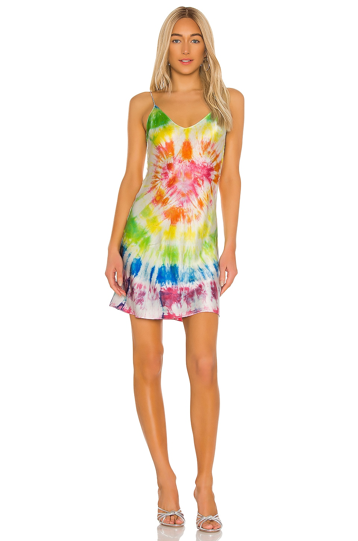 DANNIJO Mini Slip Dress in Tie Dye
