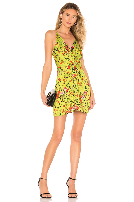 DELFI X REVOLVE Frankie Dress in Green Floral