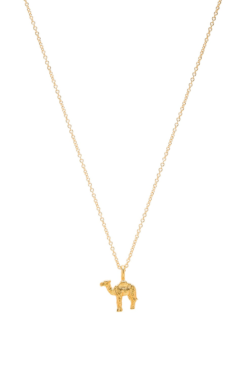 Dogeared Enjoy The Journey Necklace Charm in Gold Dipped