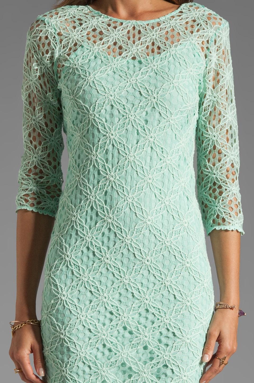 Dolce Vita Cat Crochet Lace Long Sleeve Dress in Mint
