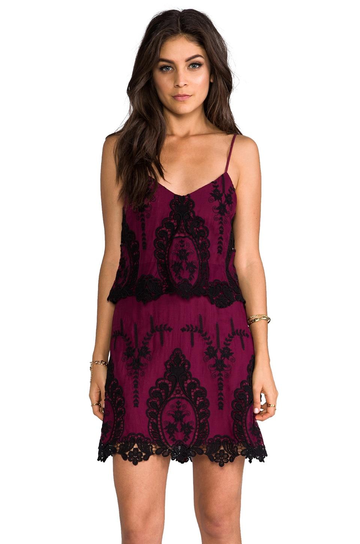 Dolce Vita Jeralyn Dress in Burgundy/Black