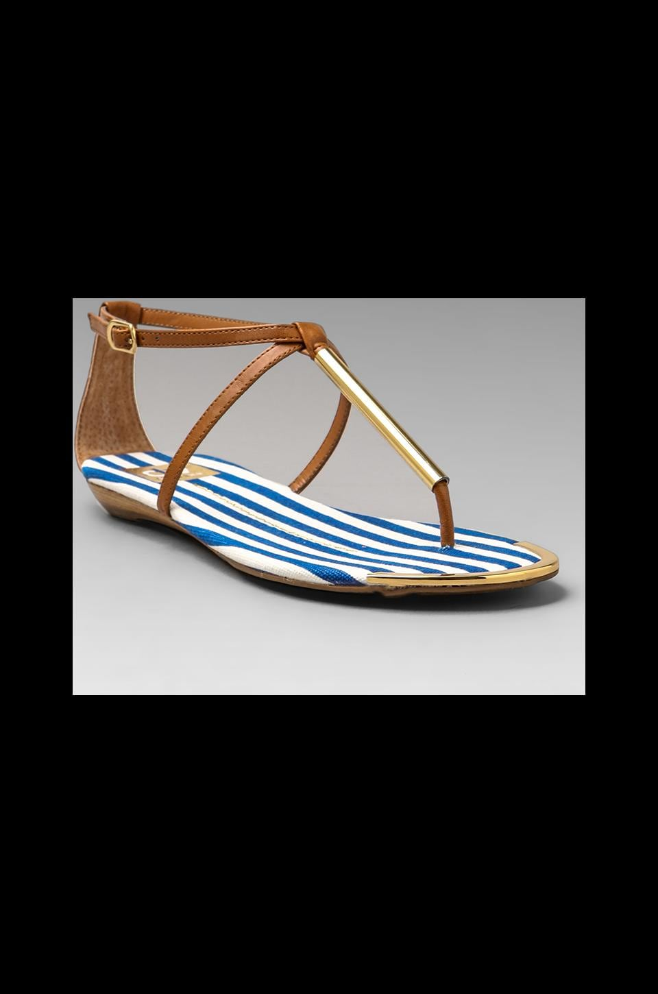 Dolce Vita Archer Sandal in Blue Stripe