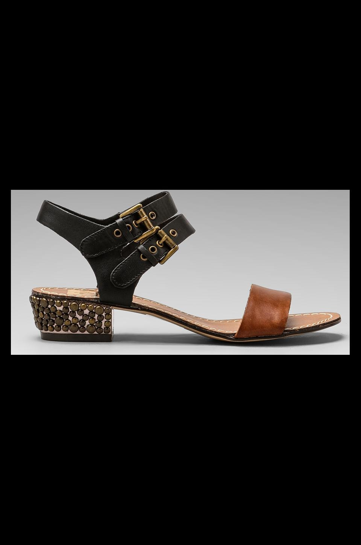 Dolce Vita Lira Heel Sandal in Cognac