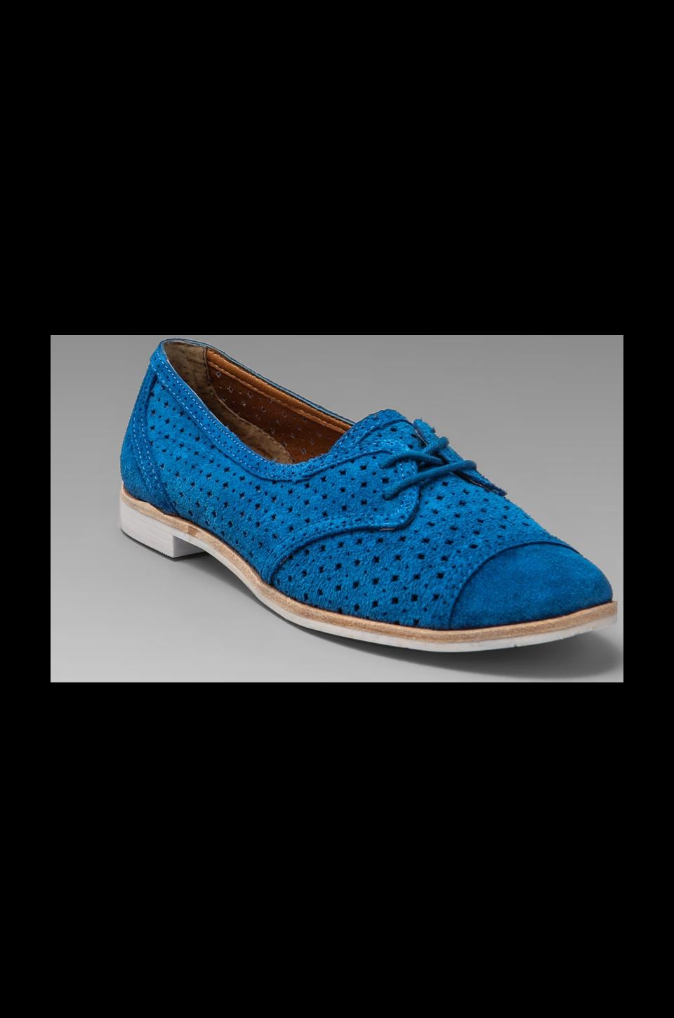Dolce Vita Marvin Oxford in Blue