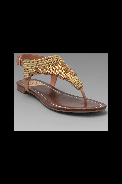 Dolce Vita Delancey Sandal in Sherbet