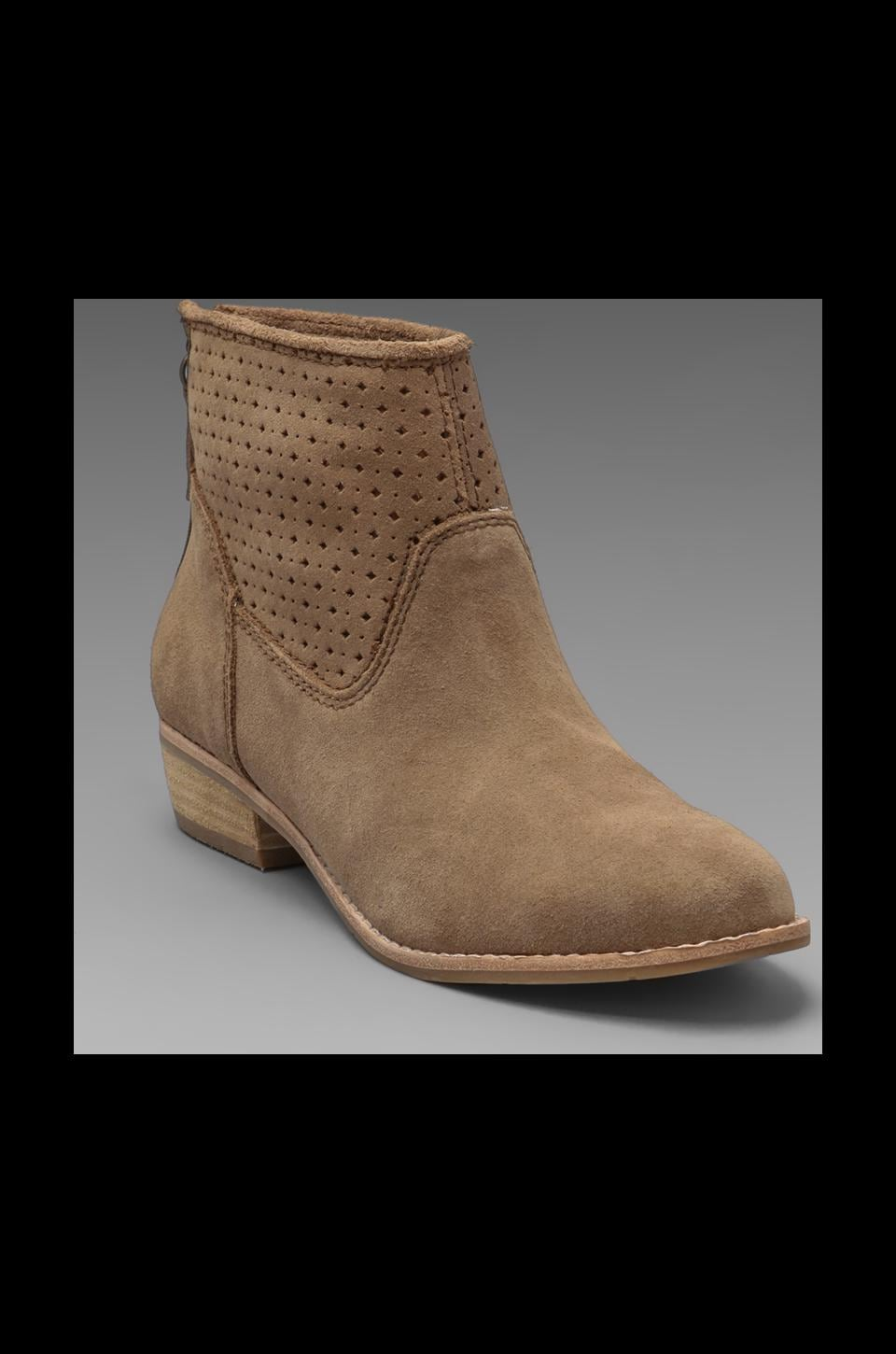 Dolce Vita Maeve Boot in Taupe