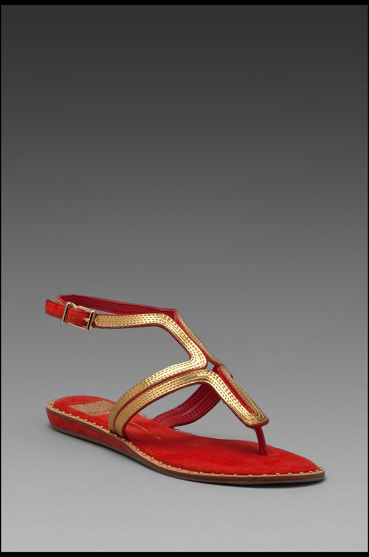 Dolce Vita Delmy Sandal in Cherry