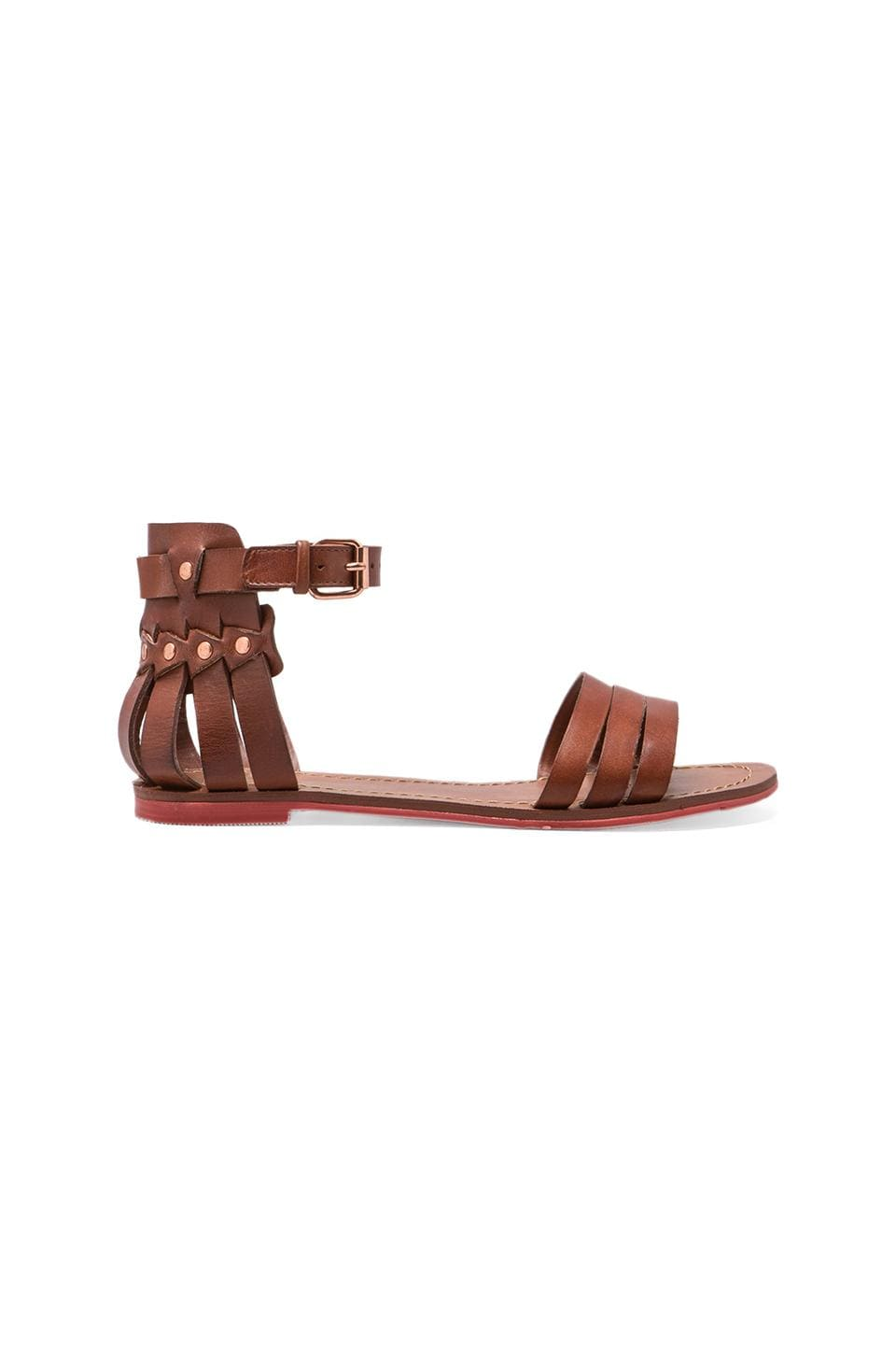 Dolce Vita Daffodil Sandal in Brown