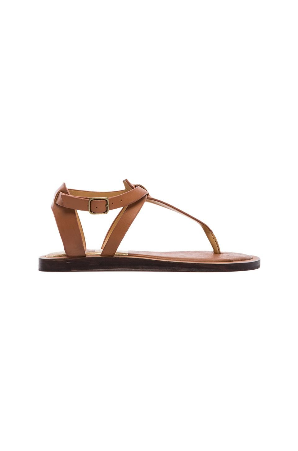 Dolce Vita Fabia Sandal in Saddle