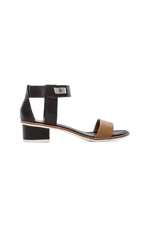 Dolce Vita Karyn Sandal in Black