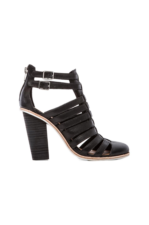 Dolce Vita Mirella Heel in Black