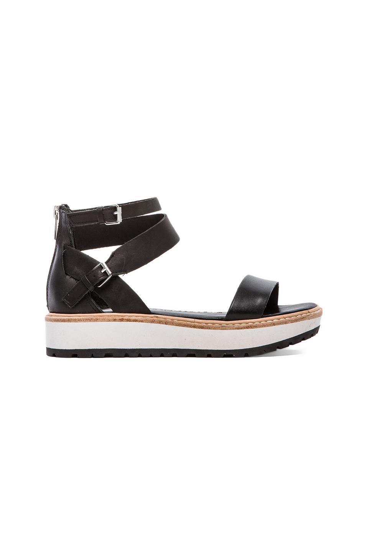 Dolce Vita Zenith Sandal in Black