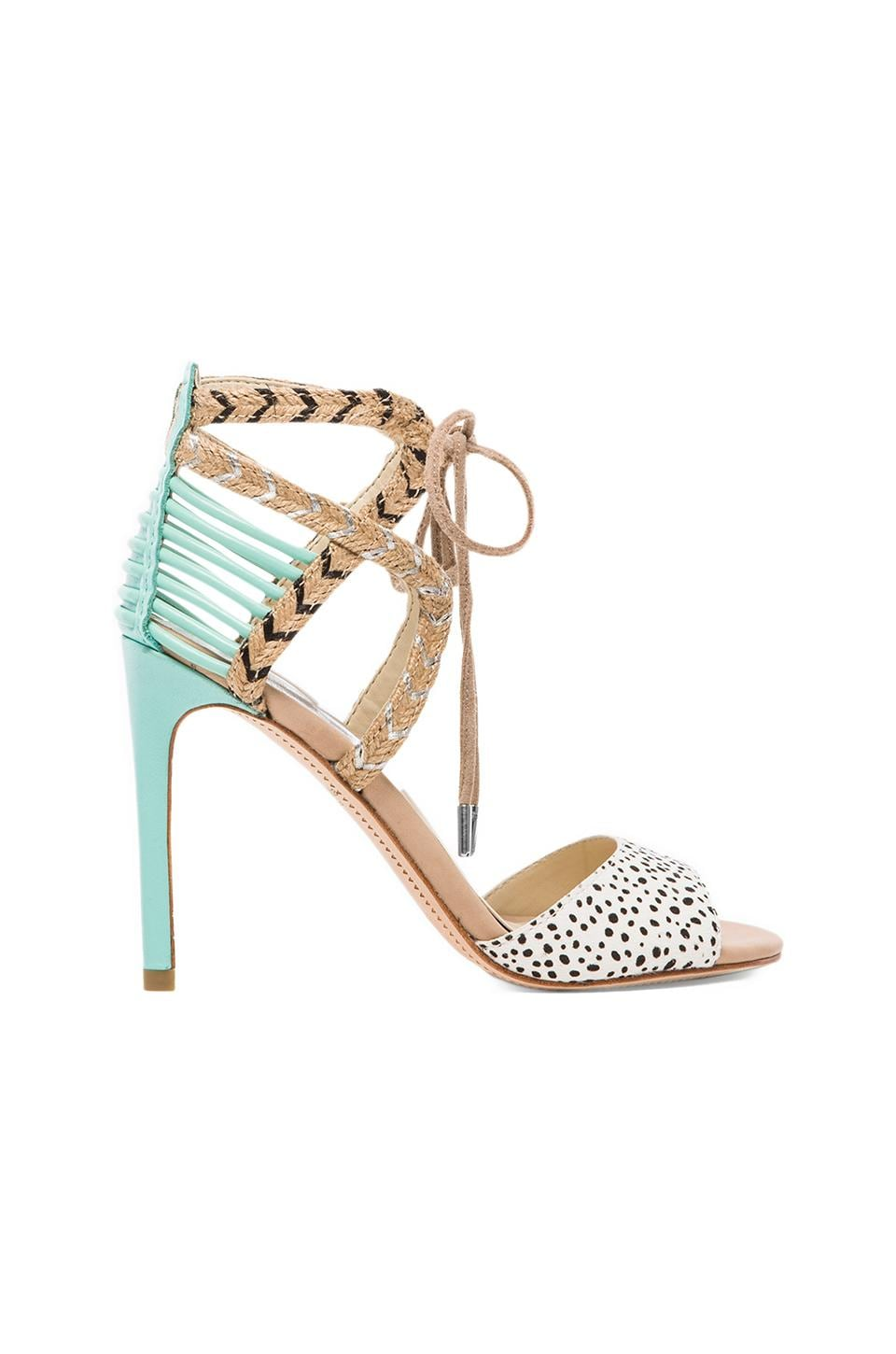 Dolce Vita Hexen Heel in Spotted Mint