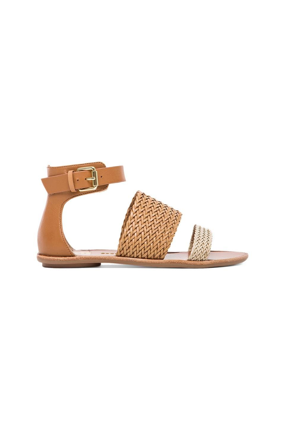 Dolce Vita Viera Sandal in Bone & Honey