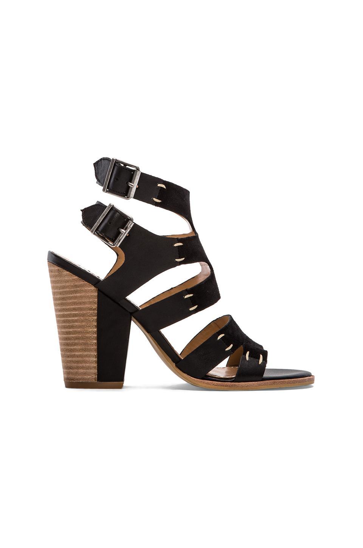 Dolce Vita Poppi Sandal in Black