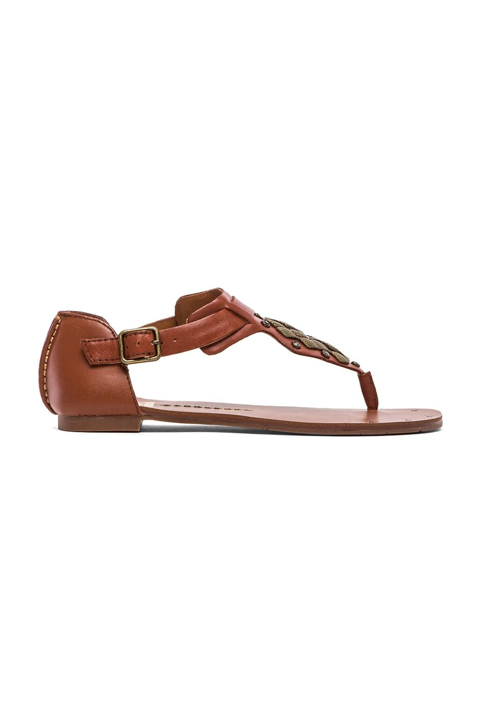 Dolce Vita Draya Sandal in Brown