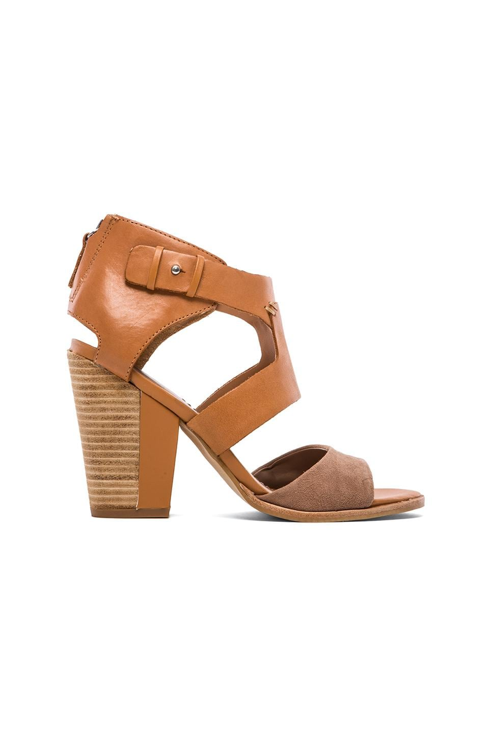 Dolce Vita Parissa Sandal in Taupe & Honey
