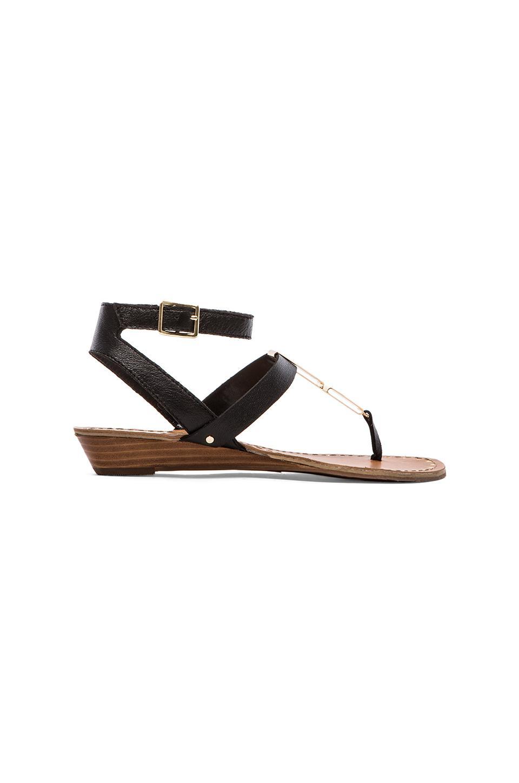 Dolce Vita Vasni Sandal in Black