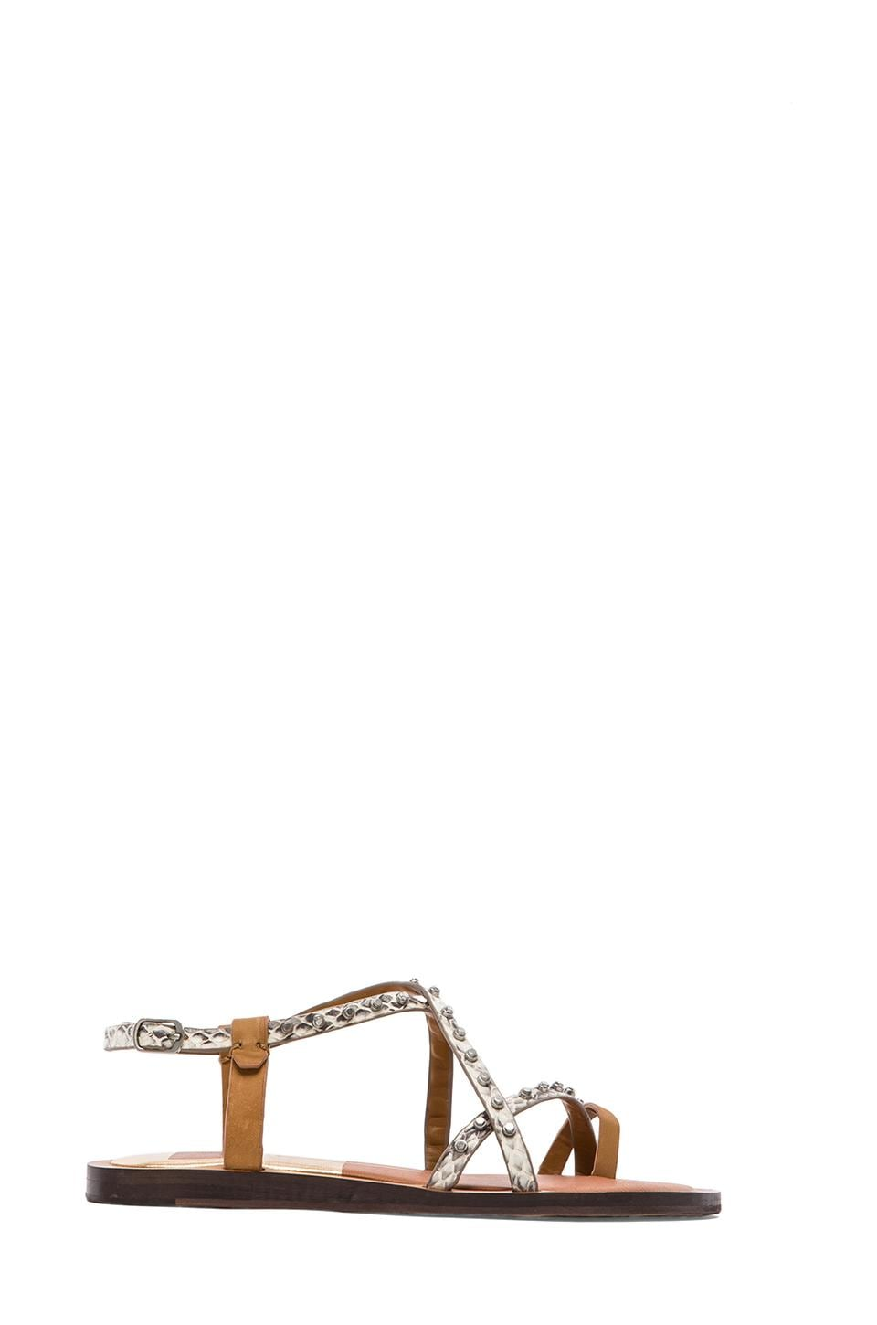 Dolce Vita Flame Sandal in Natural