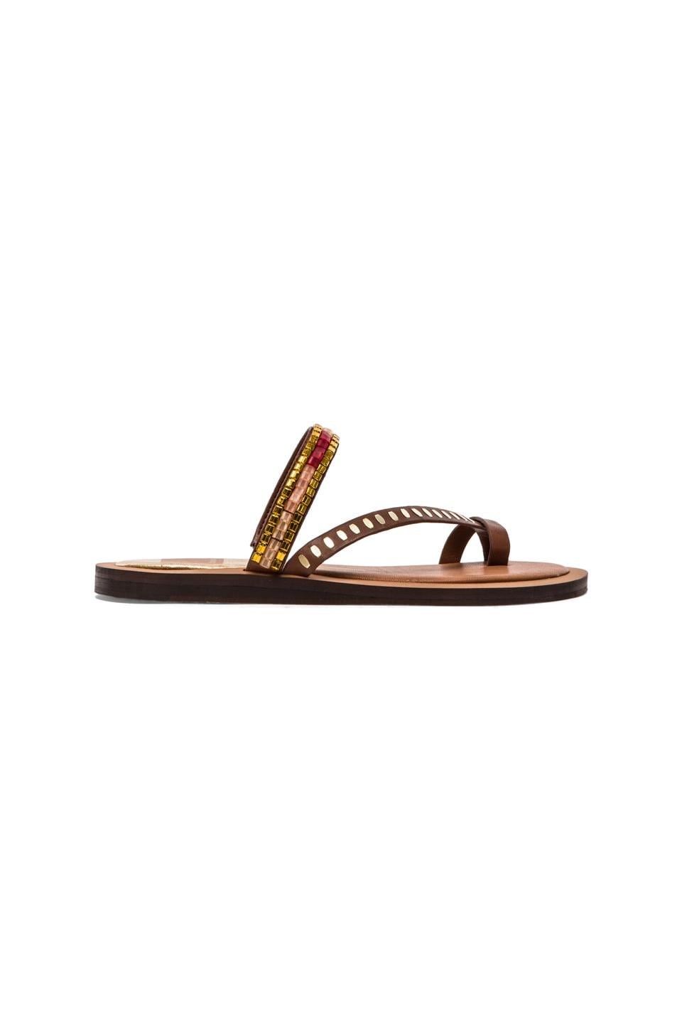 Dolce Vita Franzen Sandal in Brown