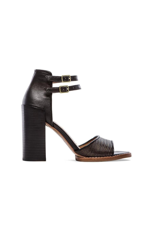 Dolce Vita Marynn Sandal in Bronze & Black