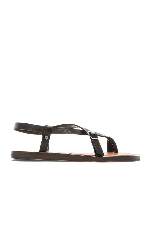 Dolce Vita Fleura Sandal in Black
