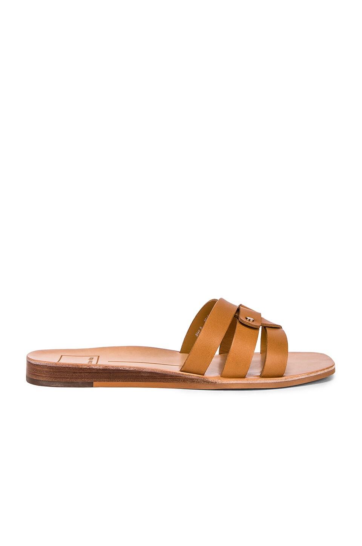 Dolce Vita Cait Sandal in Tan