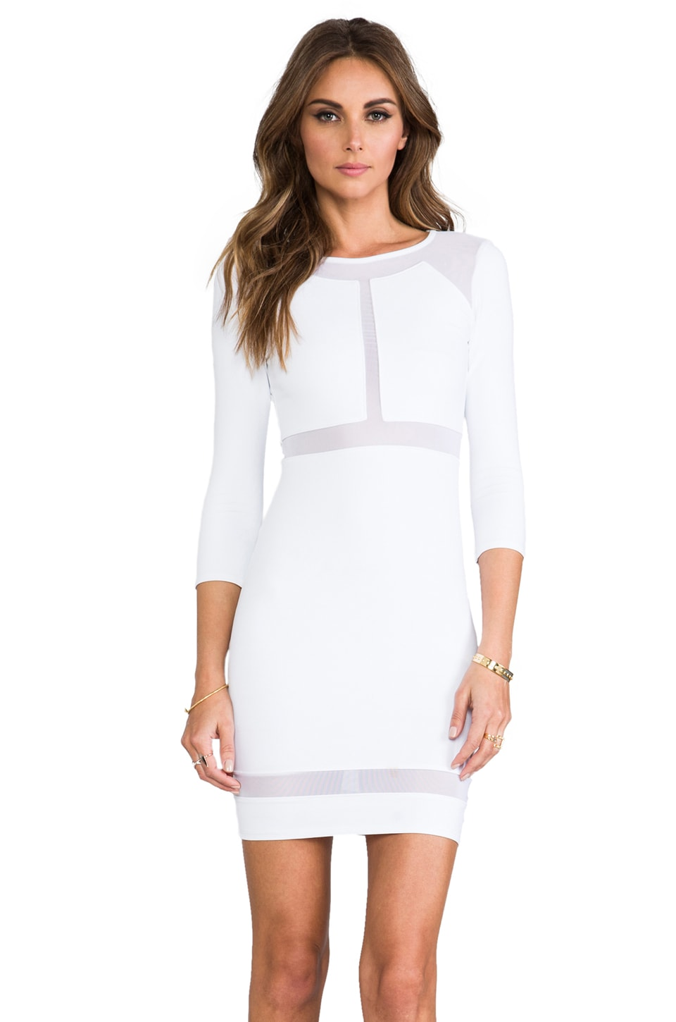 Donna Mizani Paneled Mesh Insert Dress in Frost