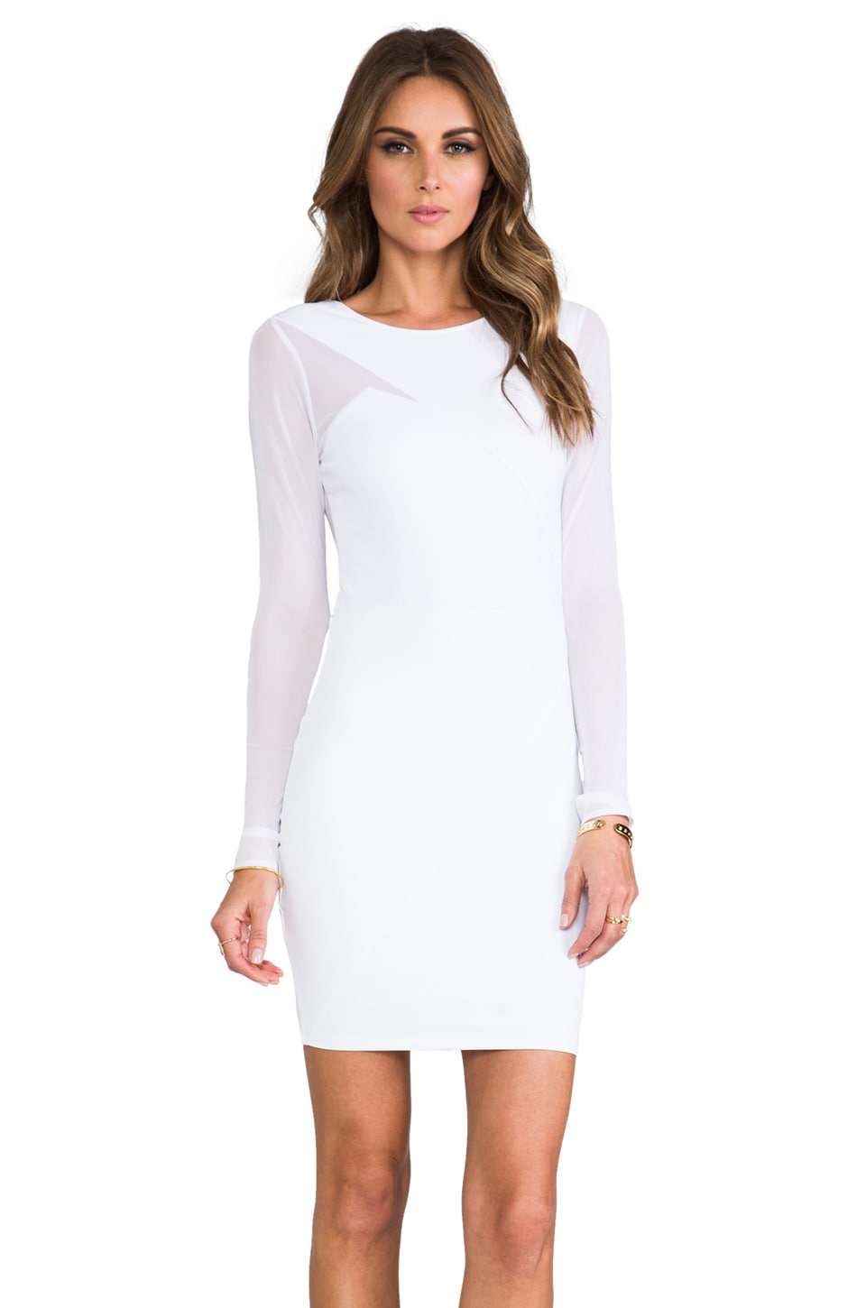 Donna Mizani Long Sleeve Splice Dress in Frost