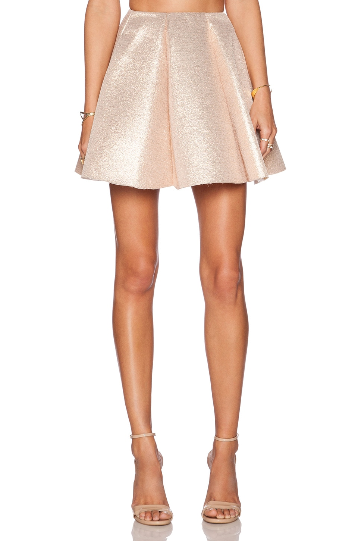 Dress Gallery Shiny Skirt in Shiny Neoprene