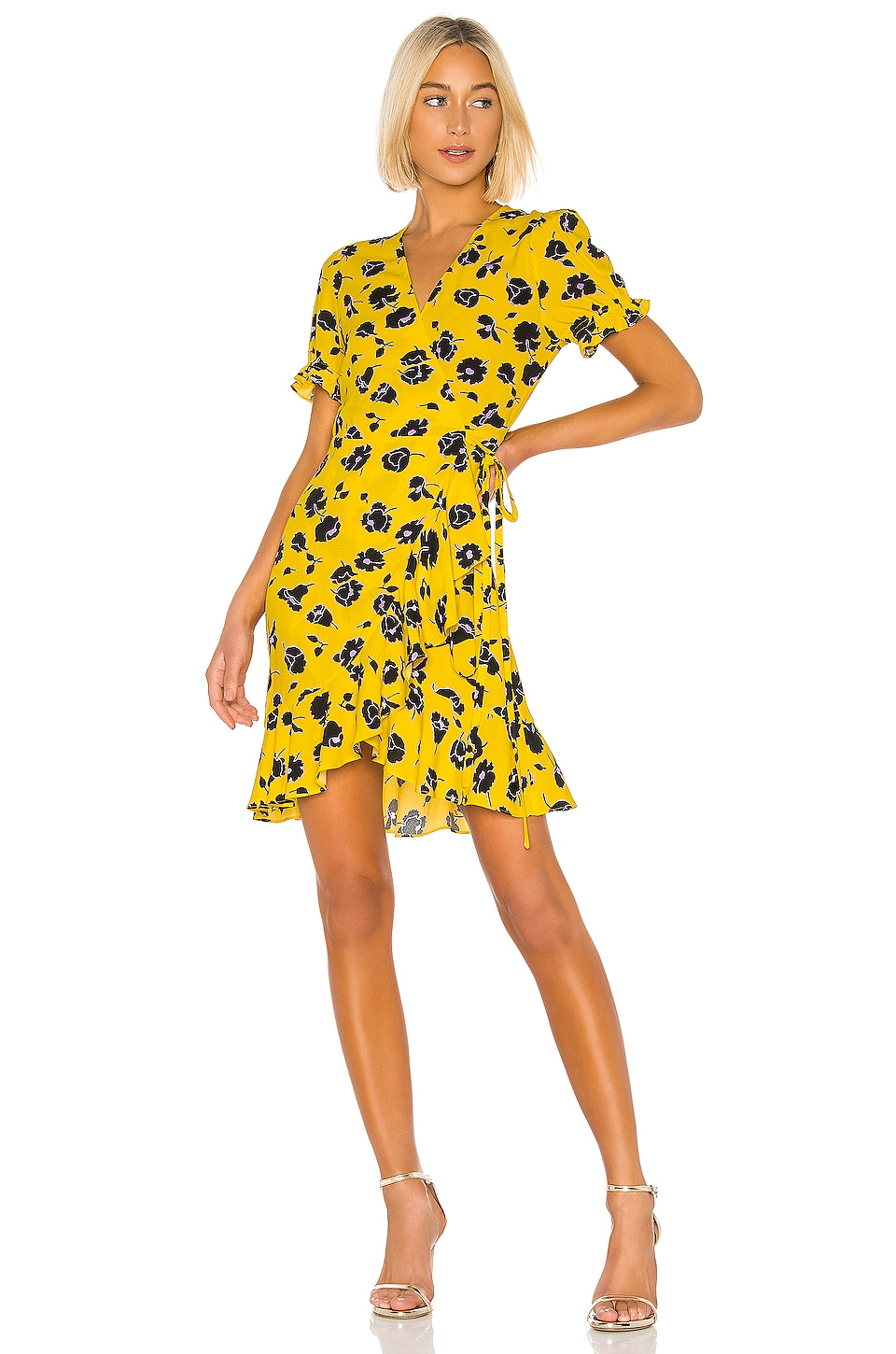 Diane von Furstenberg Kelly Dress in Rose Showers & Goldenrod
