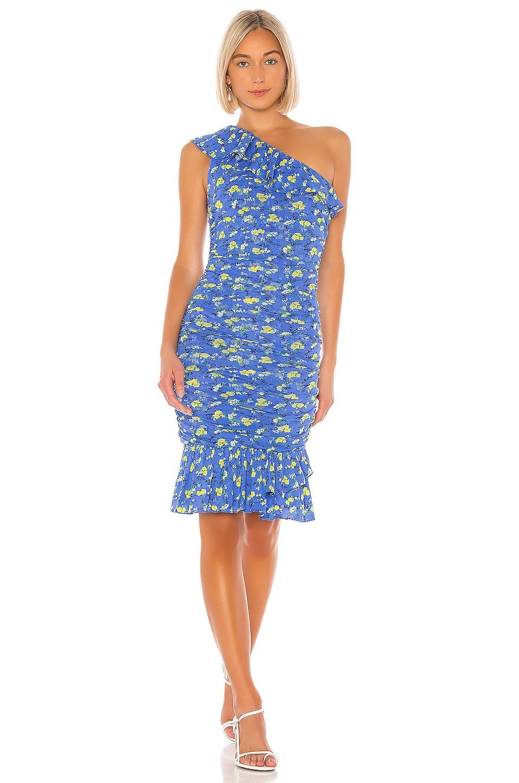 Diane von Furstenberg Aerin Dress in Ditsy Vines & Baja Blue