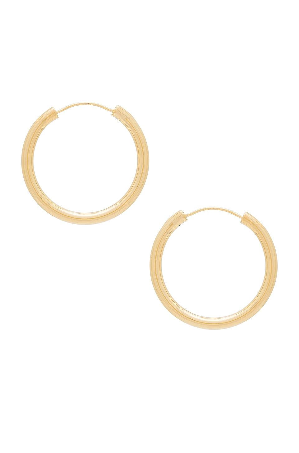 Elizabeth and James Medium Holly Hoops in Yellow Gold