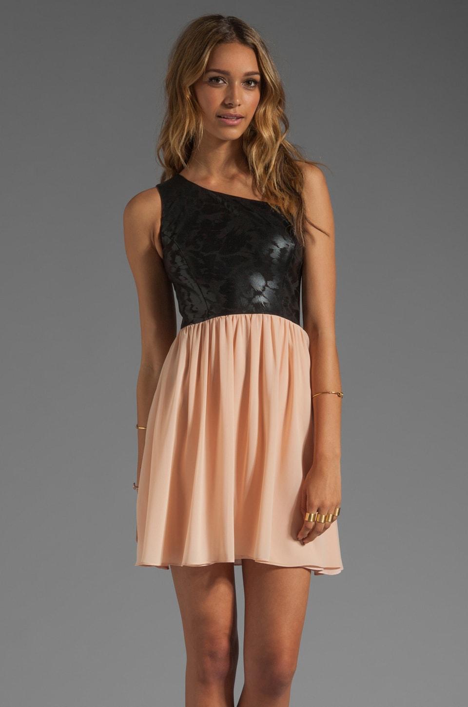 ERIN erin fetherston Nadia Dress in Black/Cameo Rose Combo