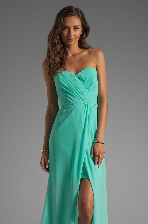 ERIN erin fetherston Gisele Gown in Florida Keys