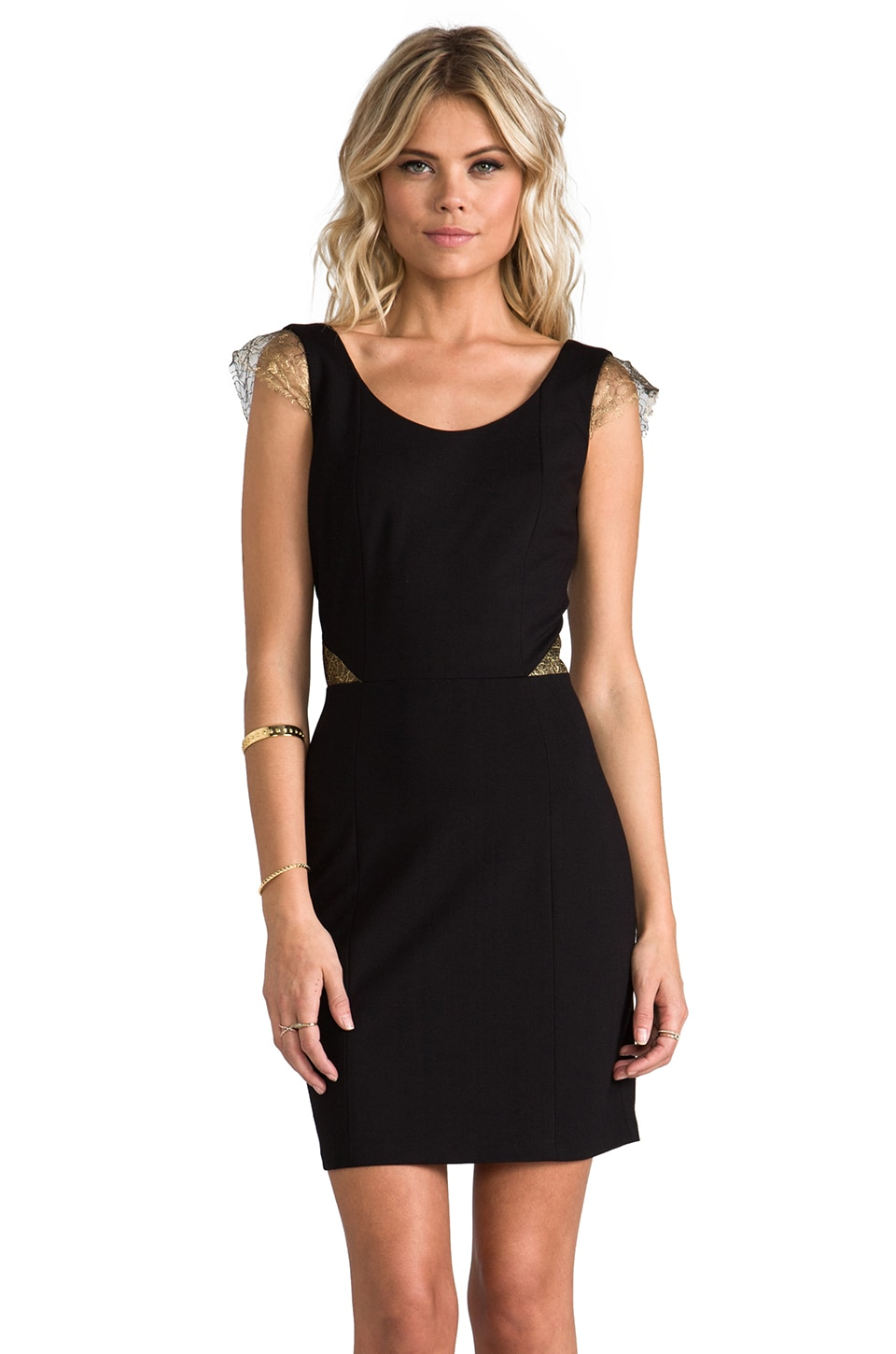 ERIN erin fetherston Gillian Dress in Black/Gold Lace