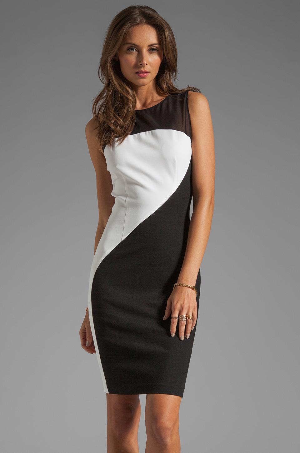 ERIN erin fetherston RUNWAY Francine Dress in Black/White
