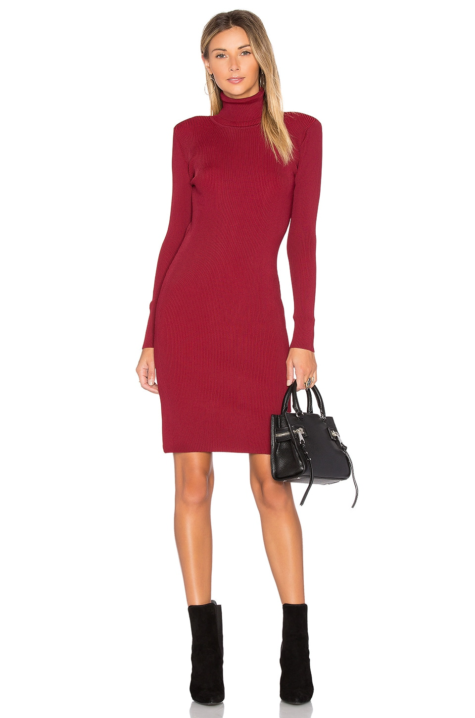 EGREY Turtleneck Sweater Dress in Wine