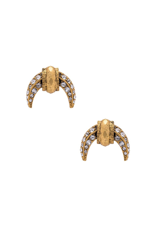 Elizabeth Cole Earring in Golden Crystal