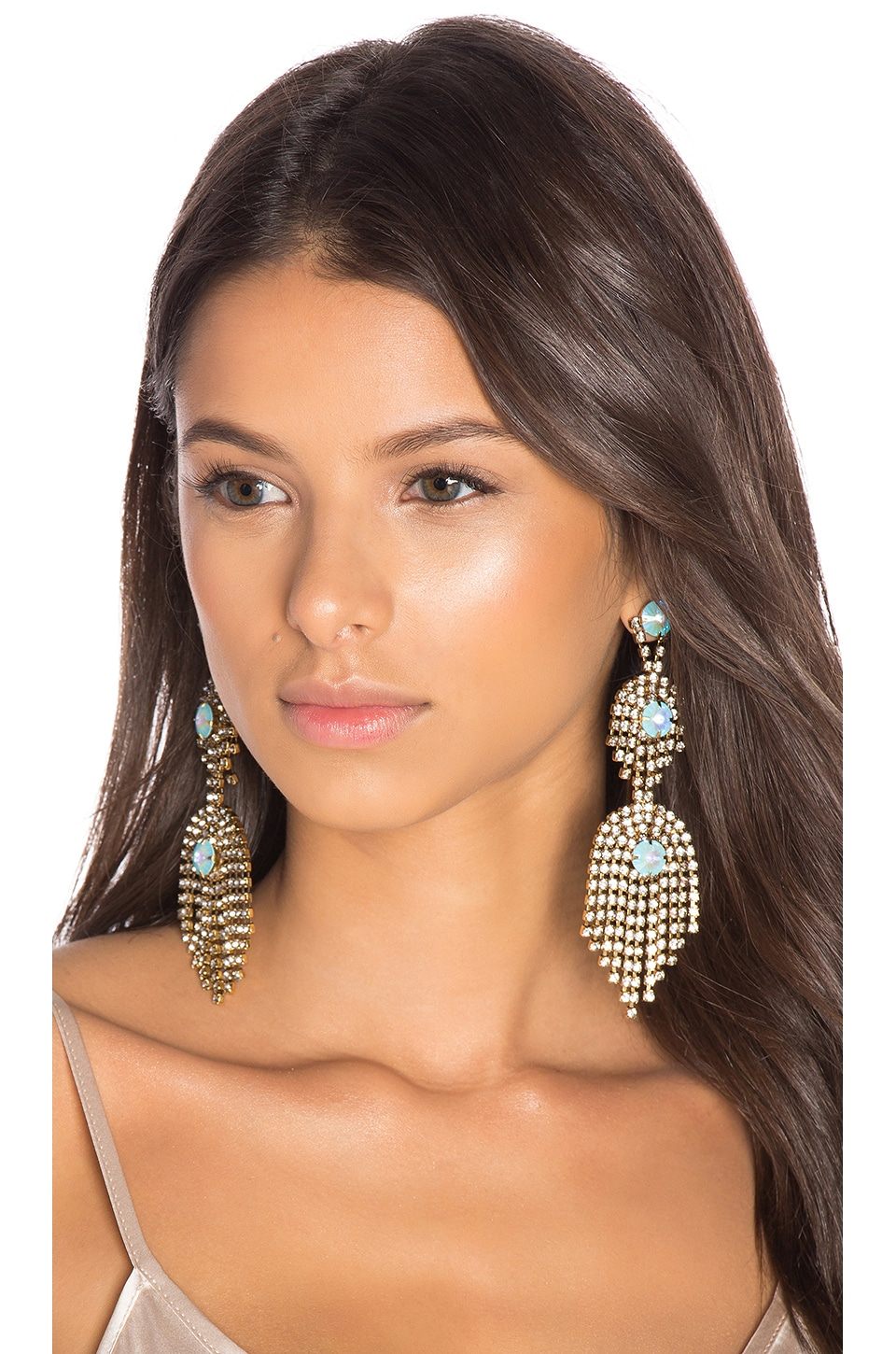 Elizabeth Cole Earrings in Turquoise