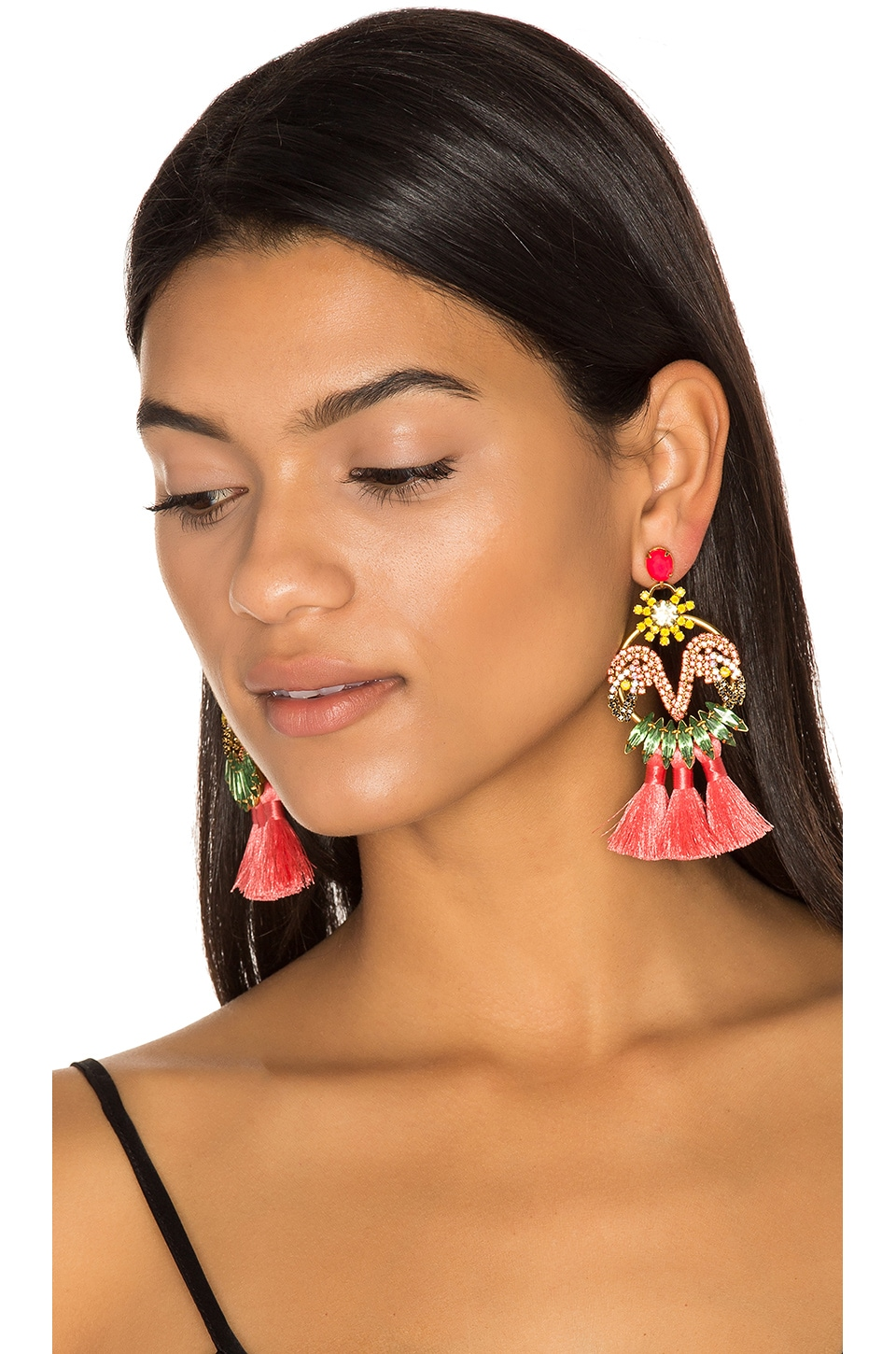 Elizabeth Cole Tassel Earrings in Tropical