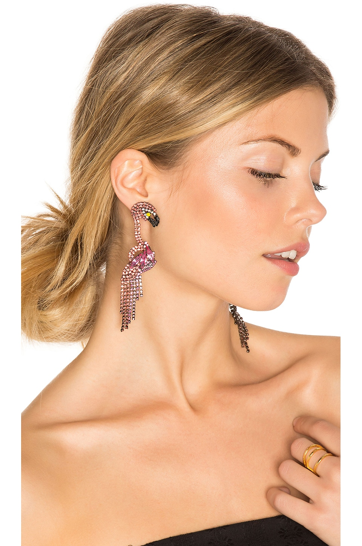 Elizabeth Cole Georgy Earrings in Tropical