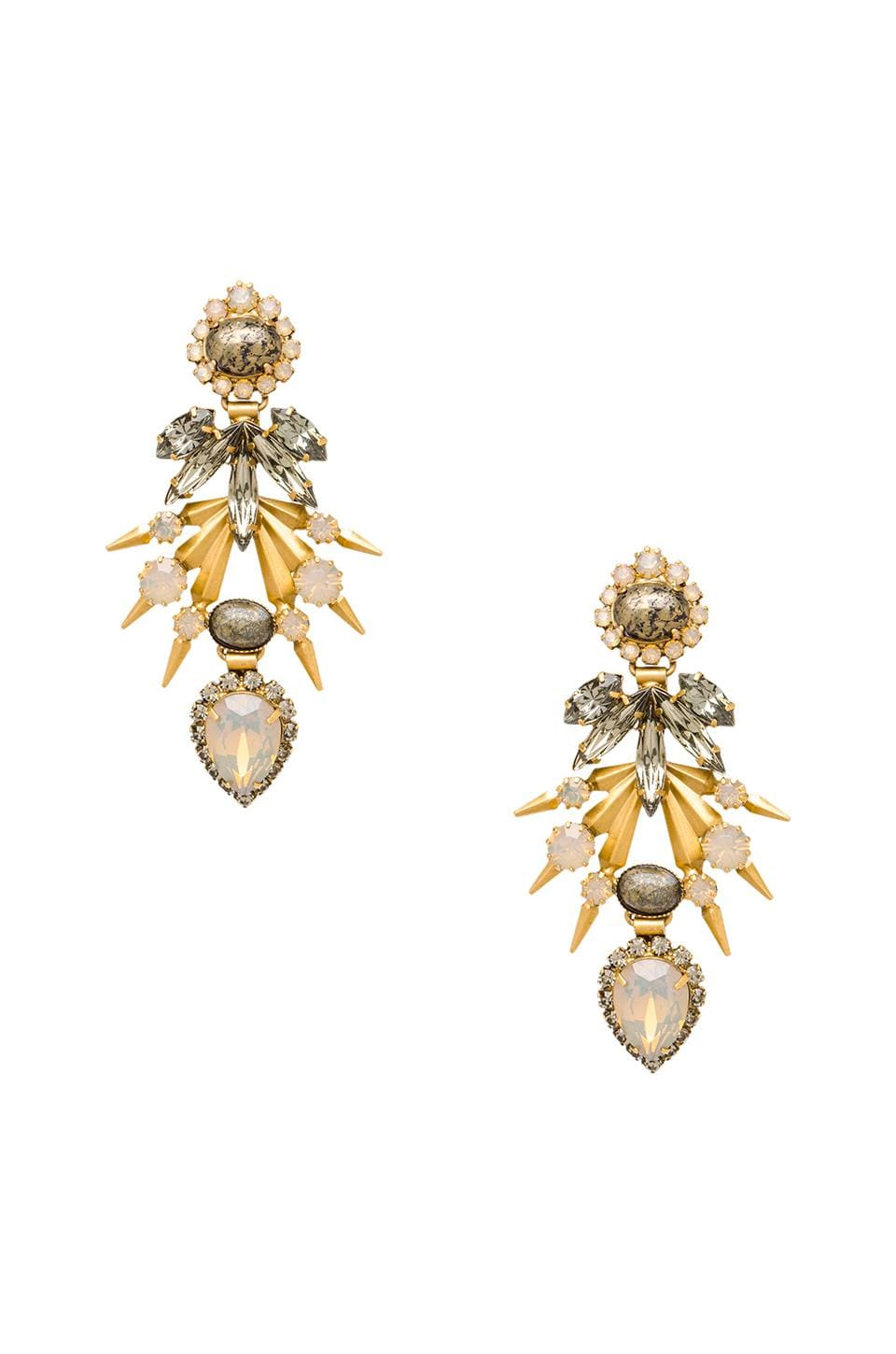 Elizabeth Cole Earrings in Champagne Crystal