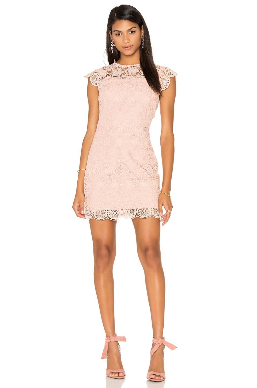 Crew Neck Lace Mini Dress by Endless Rose