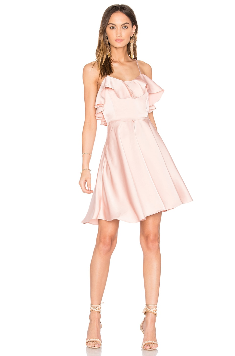 Endless Rose Ruffled Fit and Flare Dress in Dusty Pink