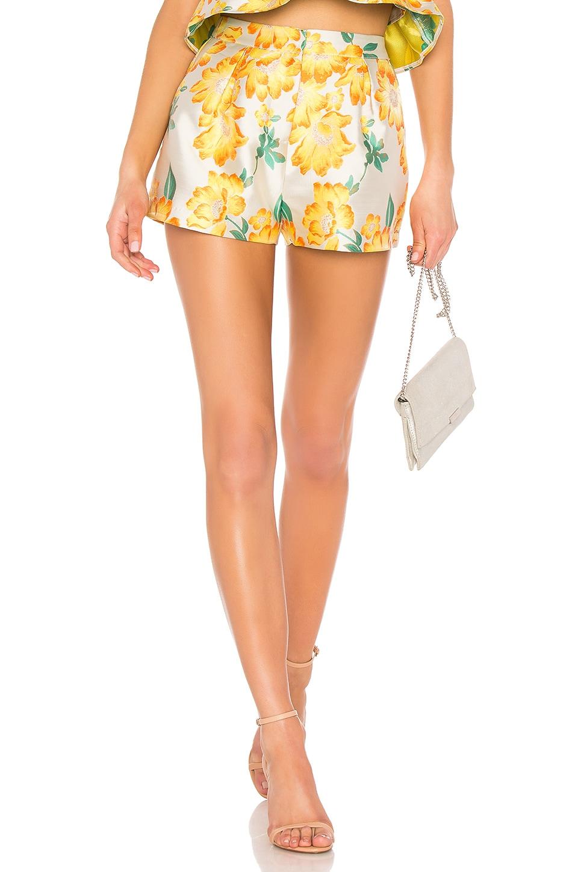 Endless Rose Brocade Shorts in Floral Brocade