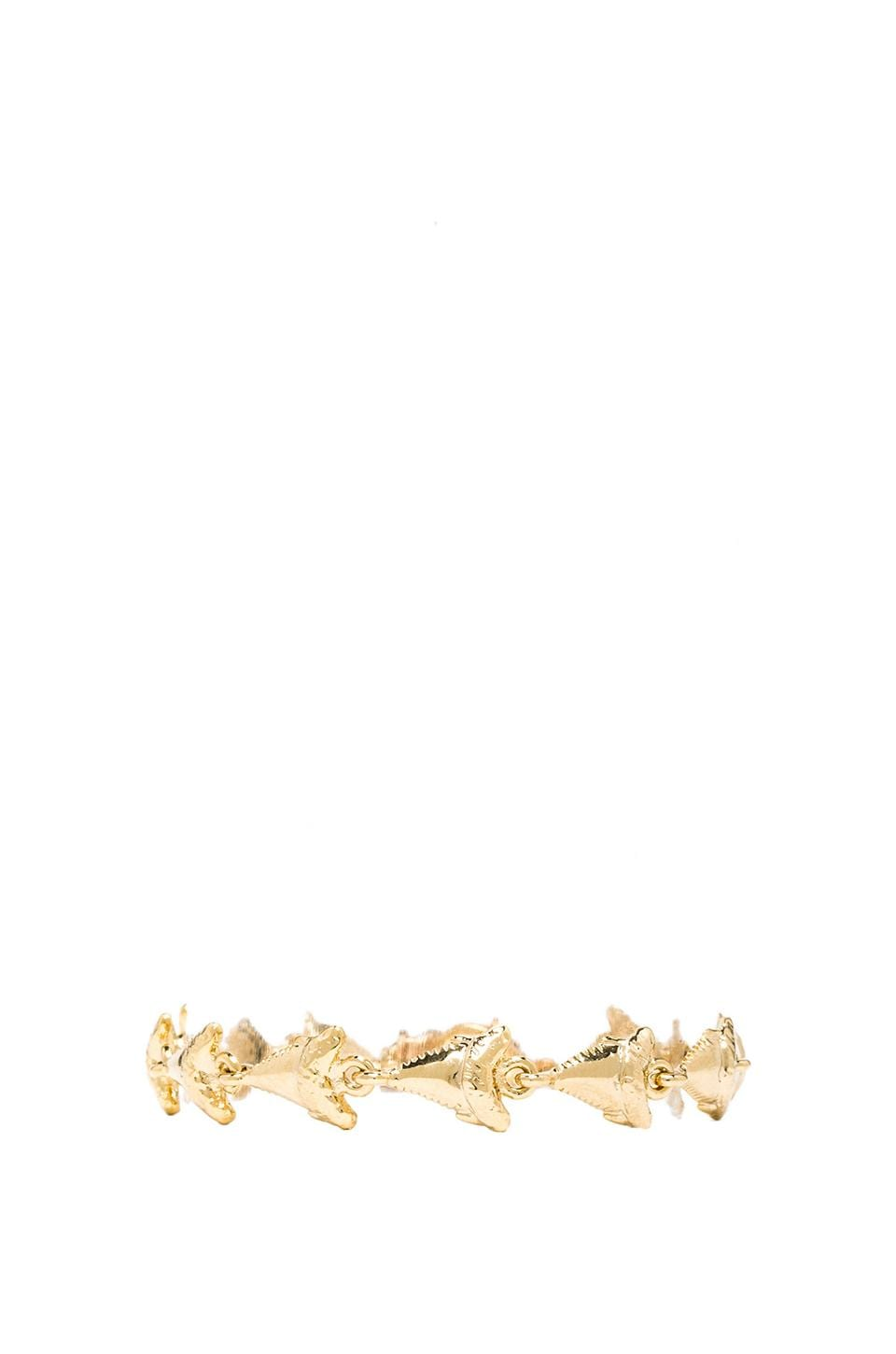 Ettika Sharktooth Bracelet in Gold
