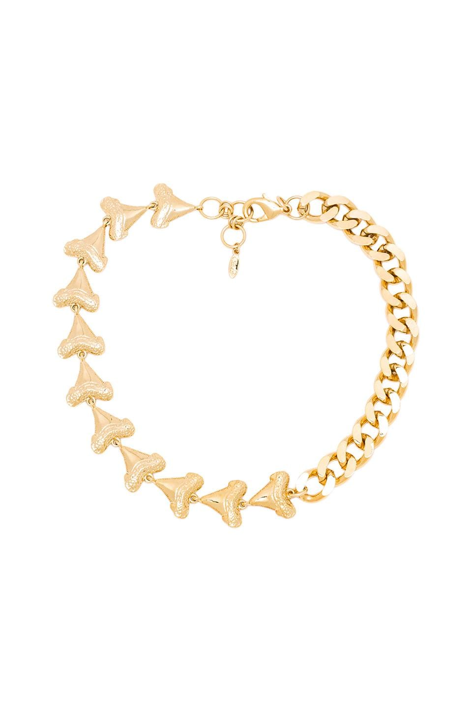 Ettika Shark Tooth Chain Necklace in Gold